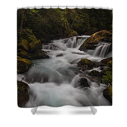 Delicate And Powerful Shower Curtain by Mike Reid
