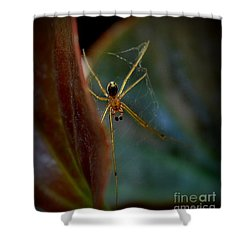 Shower Curtain featuring the photograph Delicate  Constructor by Marija Djedovic