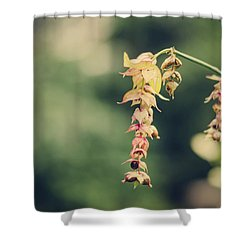 Delicate Shower Curtain by Heather Applegate