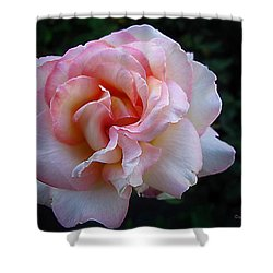 Delicate Pink Shower Curtain by Joyce Dickens