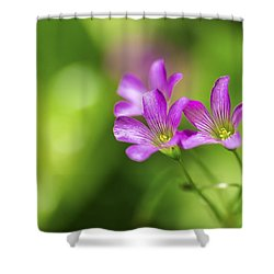 Delicate Purple Wildflowers Shower Curtain