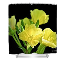 Delicate Yellow Wildflowers In The Sun Shower Curtain