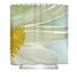 Delightful Daisy Shower Curtain