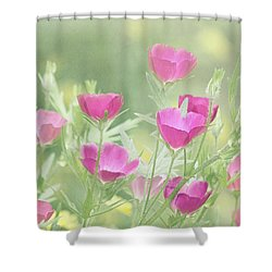 Delightful Shower Curtain by Kim Hojnacki