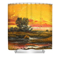 Shower Curtain featuring the painting Delta Sunset by Sorin Apostolescu