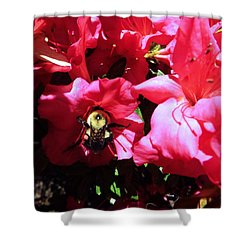 Shower Curtain featuring the photograph Delving Into Sweetness by Robyn King