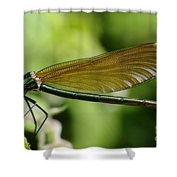 Demoiselle Shower Curtain