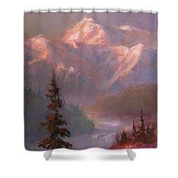 Denali Summer - Alaskan Mountains In Summer Shower Curtain by Karen Whitworth
