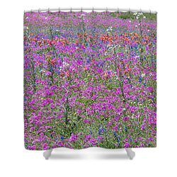 Dense Phlox And Other Wildflowers Shower Curtain