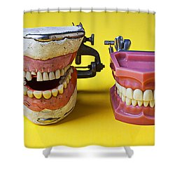 Dental Models Shower Curtain by Garry Gay