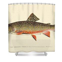 Denton Brook Trout Shower Curtain