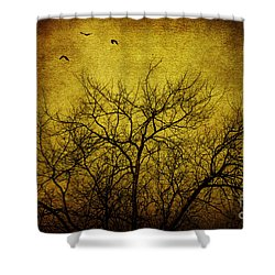 Departed Shower Curtain by Andrew Paranavitana