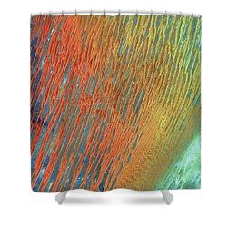 Desert Abstract Shower Curtain by Jennifer Rondinelli Reilly - Fine Art Photography
