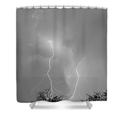 Shower Curtain featuring the photograph Desert Ballet For A Horse by J L Woody Wooden
