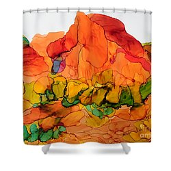 Desert Beauty 6 Shower Curtain