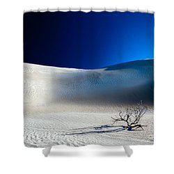 Desert Branch Void Shower Curtain