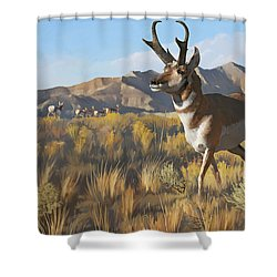 Desert Buck Shower Curtain by Rob Corsetti