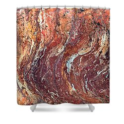 Desert Canyon Shower Curtain by Jane Biven