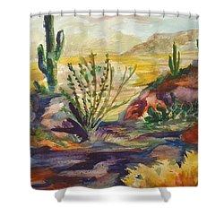 Desert Color Shower Curtain