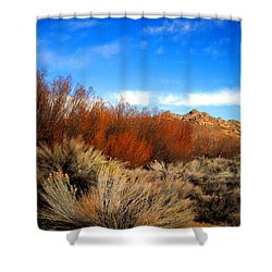 Desert Colors Shower Curtain