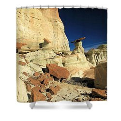 Desert Decorations Shower Curtain by Adam Jewell