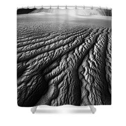 Desert Dreaming 1 Of 3 Shower Curtain