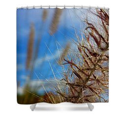 Shower Curtain featuring the photograph Desert Foliage by Chris Tarpening