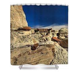 Desert Litter Shower Curtain by Adam Jewell