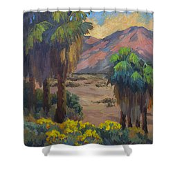 Desert Marigolds At Andreas Canyon Shower Curtain
