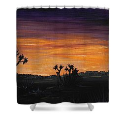 Desert Night Shower Curtain by Anastasiya Malakhova