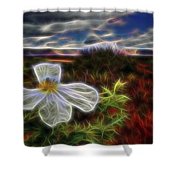 Desert Primrose 1 Shower Curtain