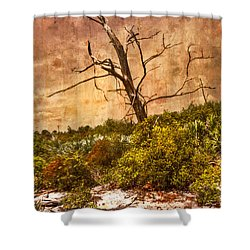 Desert Rose Shower Curtain by Debra and Dave Vanderlaan