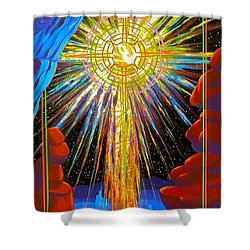 Desert Star  Shower Curtain by Alan Johnson