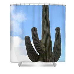 Desert Statesman Shower Curtain