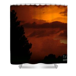 Desert Storm Shower Curtain by Carla Carson