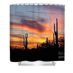 Desert Sunset Shower Curtain by Joseph Baril