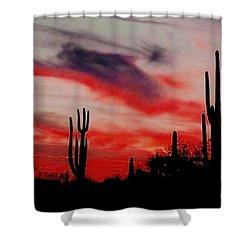 Desert Sunset Northern Lights Version 3 Shower Curtain