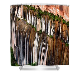 Desert Varnish Shower Curtain