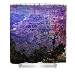 Desert View Sunset Shower Curtain