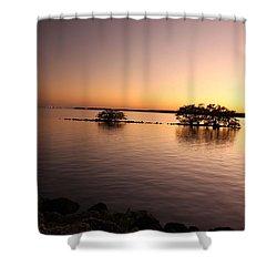 Deserted Island Shower Curtain by AR Annahita