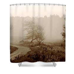 Desolation  Shower Curtain by Bruce Patrick Smith