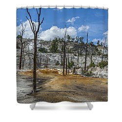 Desolation Yellowstone National Park Shower Curtain