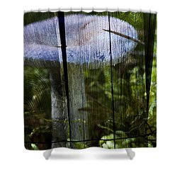 Destroying Angel Shower Curtain by Nathan Wright
