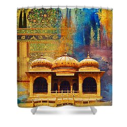 Detail Of Mohatta Palace Shower Curtain by Catf