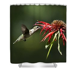 Determination Shower Curtain by Christina Rollo