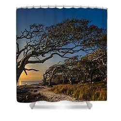 Determination Shower Curtain by Debra and Dave Vanderlaan