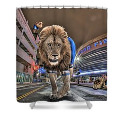 Shower Curtain featuring the photograph Detroit Lions At Ford Field by Nicholas  Grunas