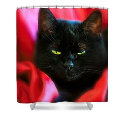 Devil In A Red Dress Shower Curtain by Bob Orsillo