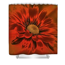 Devil May Care Shower Curtain