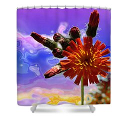 Devil's Paintbrush Shower Curtain